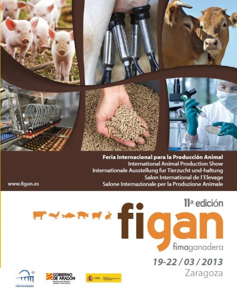 FIGAN-2013